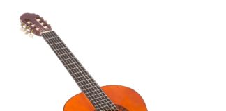 bisnis gitar