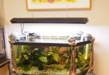 model meja aquarium