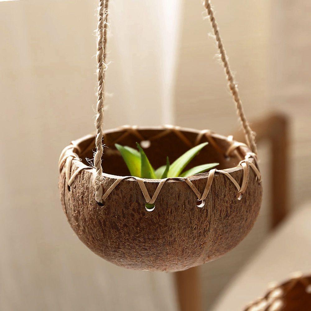 Membuat Pot Sendiri dari Batok Kelapa