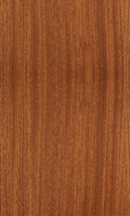 veneer kayu mahoni
